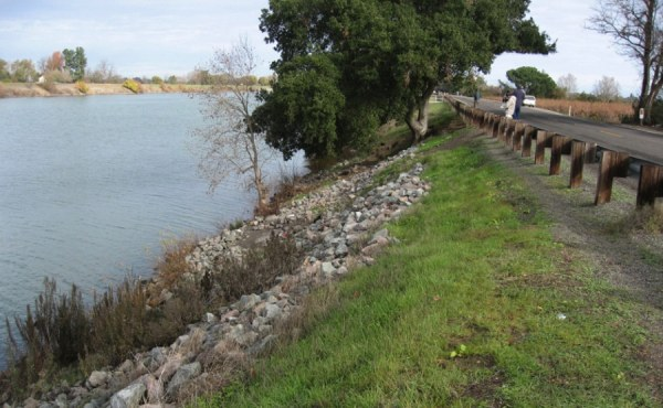 Geosyntec provided geotechnical review and field documentation for 80 miles of non-urban levees in Northern California