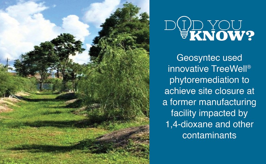 Phytoremediation at a Former Manufacturing Facility in Florida